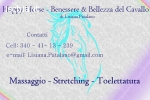Massaggio - Stretching - Toelettatura Cavallo