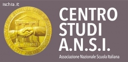 A.N.S.I. (associazione nazionale scuola italiana)