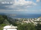 Affittasi Villa Panoramica