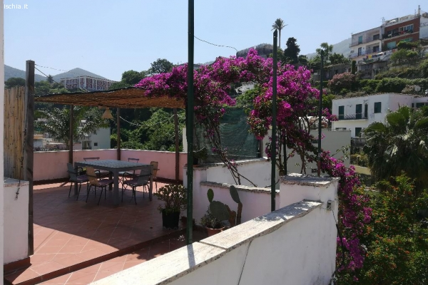 AFFITTO Appartamento Panoramico su Piazza Porto Casamicciola