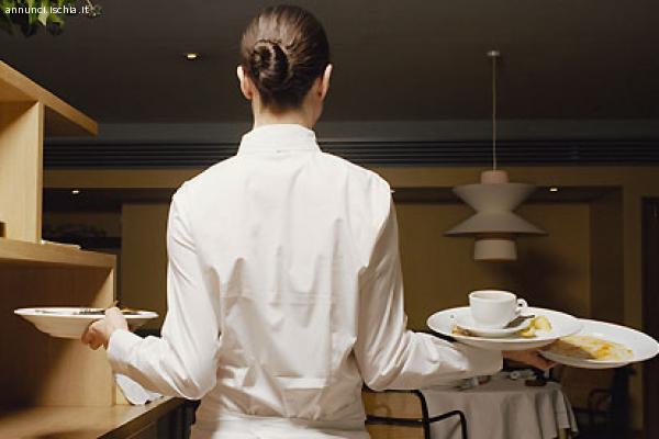 Cercasi cameriere /a
