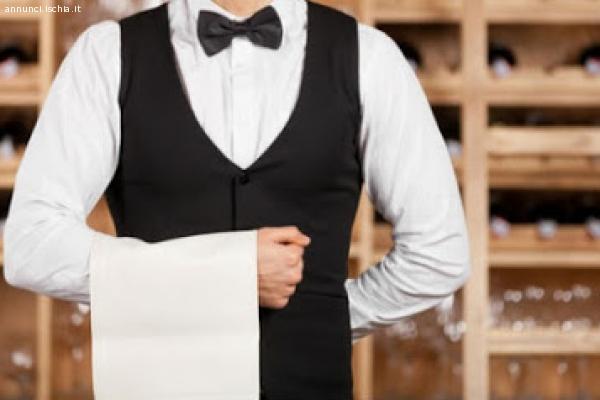 Cercasi cameriere