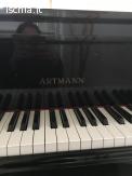 Vendo pianoforte a mezza coda