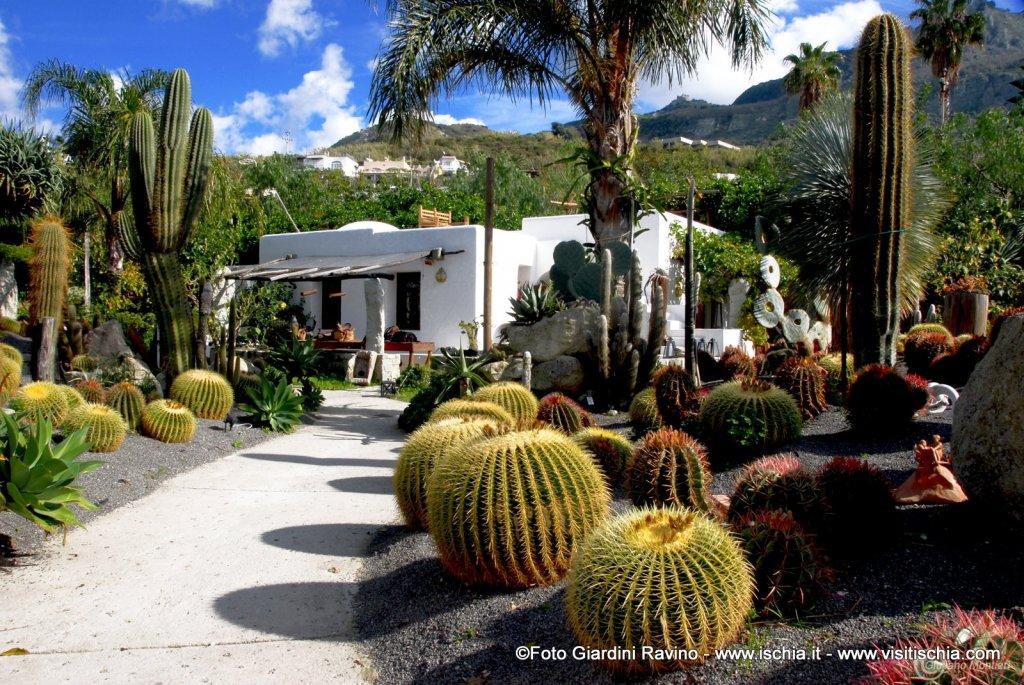 Un giardino in mezzo al mare - Giardini mediterranei ...