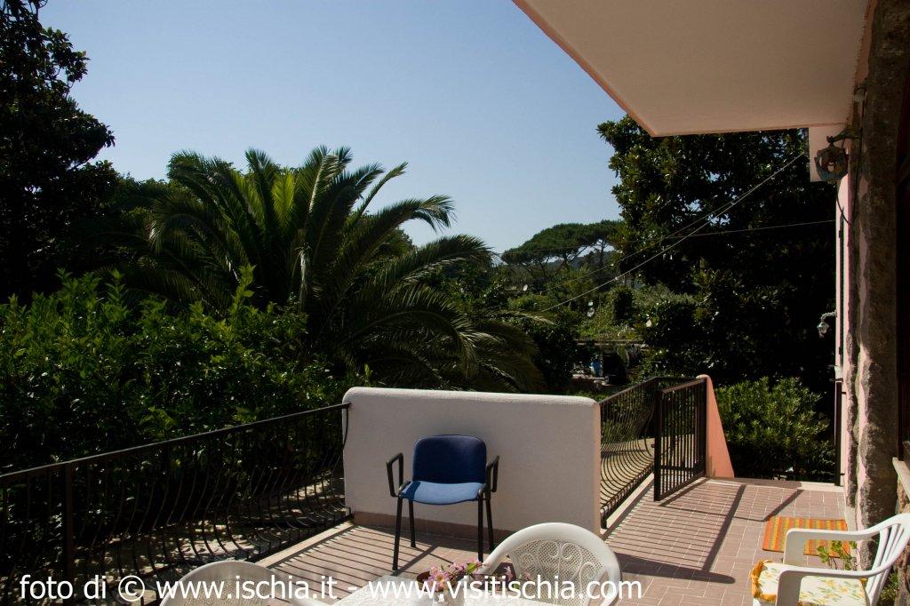 Villa candida for Appartamenti ischia
