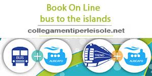 bus 300x150 en