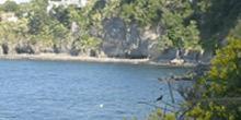Cafiero Bay