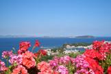 Panorama sul Golfo - Ischia