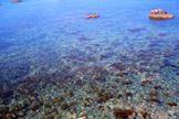 Il Mare Cristallino - Isola di Ischia