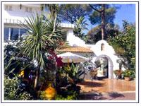 ISCHIA LASTMINUTE, OFFERTE HOTELS: CENTRAL PARK HOTEL TERME
