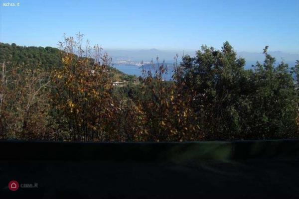 Isola d'Ischia Vendesi piccola villetta 56 m.q + 1600 di ter
